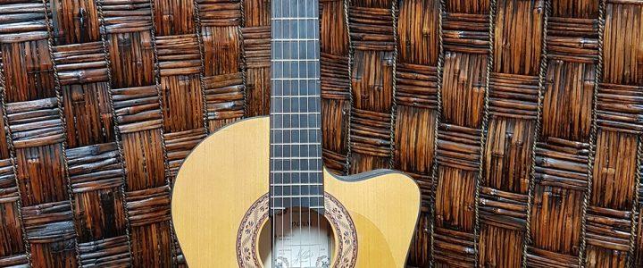 گیتار محمدرضا رجایی